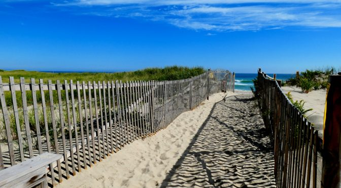 Love The Walk To Nauset Beach On Cape Cod