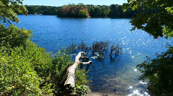 Baker's Pond In Orleans On Cape Cod.