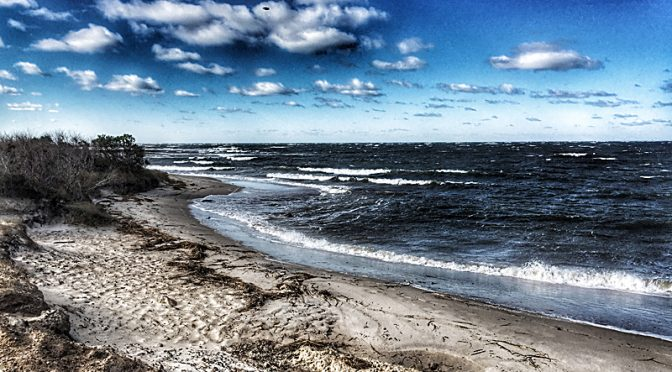 Boat Meadow Beach On Cape Cod Bay Was Gorgeous!