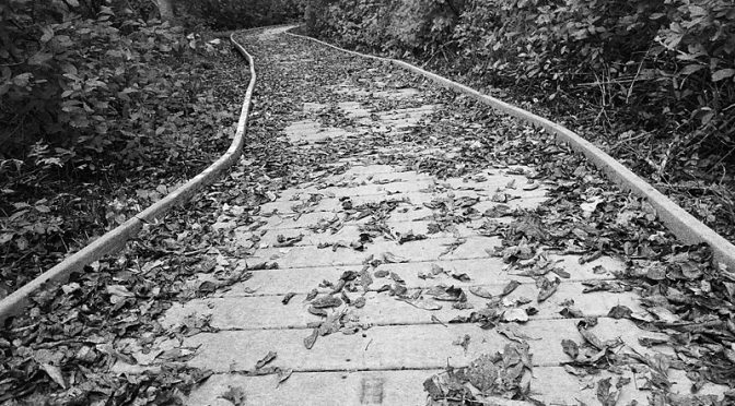 The Boardwalk At Fort Hill On Cape Cod In Black And White.