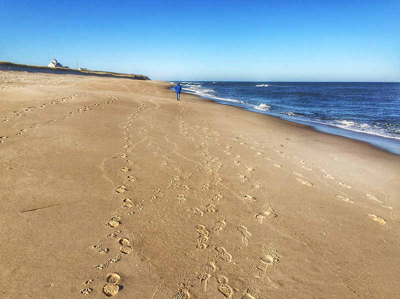 Yesterday Was Gorgeous On Coast Guard Beach On Cape Cod!