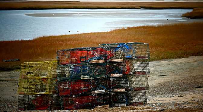 The Lobster Pots Are Out For The Season On Cape Cod!