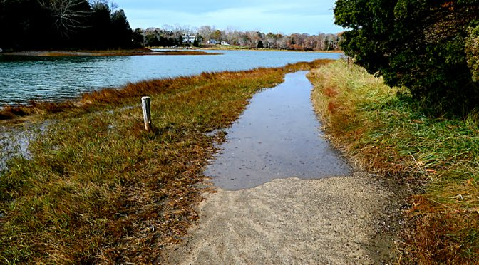 Nauset Marsh Trail On Cape Cod At High Tide.