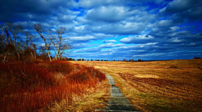Gorgeous Clouds At Fort Hill On Cape Cod!