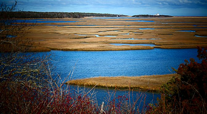 Nauset Marsh From Fort Hill On Cape Cod Is Always Spectacular!
