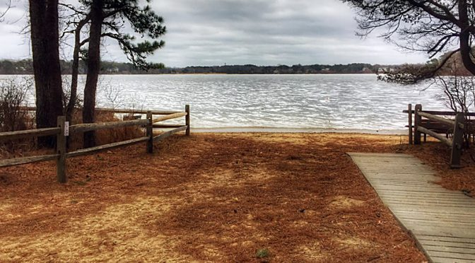 Our Wiley Park Loop Hike On Cape Cod Is On The AllTrails App.