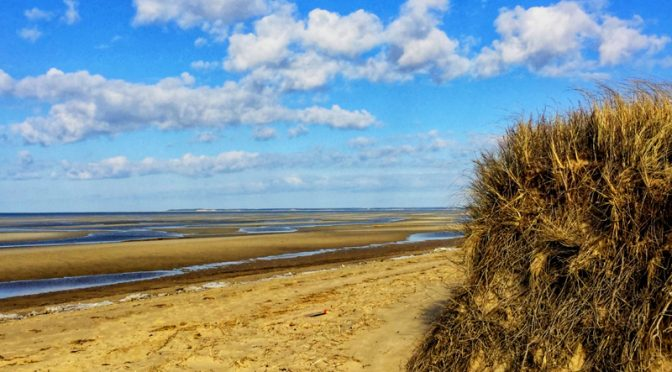 Love The Flats On Cape Cod Bay At First Encounter Beach.