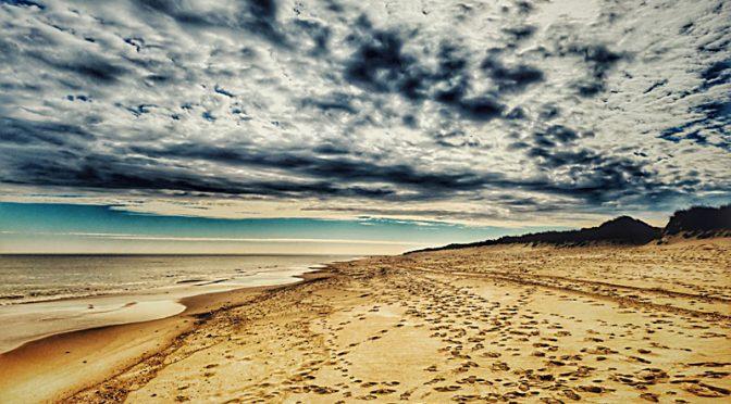 Facing South On Coast Guard Beach On Cape Cod.