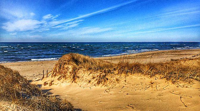 Beautiful Trail To Duck Harbor Beach In Wellfleet On Cape Cod.