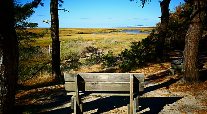 So Many Benches To View The Gorgeous Views On Cape Cod!