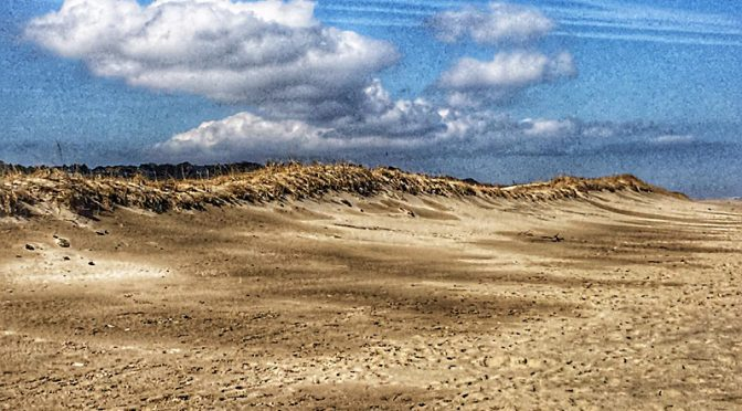 The Dunes At Nauset Beach On Cape Cod.