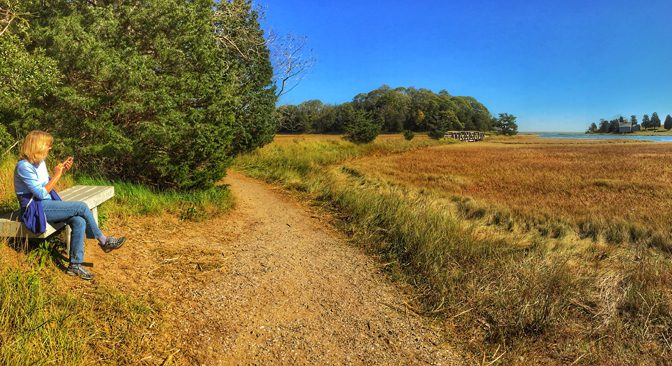 Nauset Marsh Trail In Eastham On Cape Cod is On The AllTrails App.