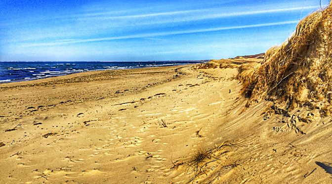 Wellfleet Beaches On Cape Cod Are Always Spectacular!