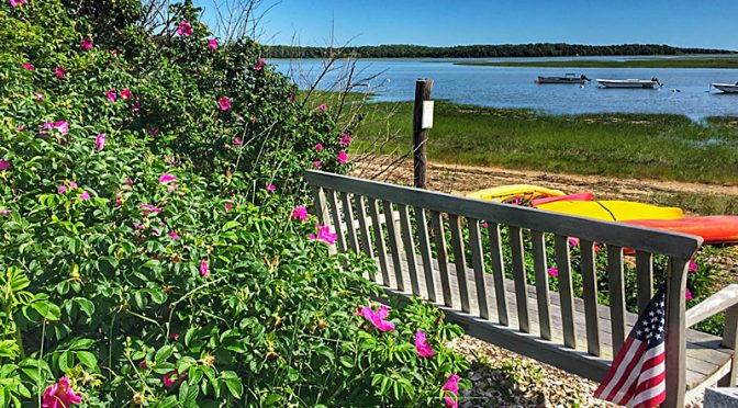 Hemenway Landing On Cape Cod Has The Perfect Bench!
