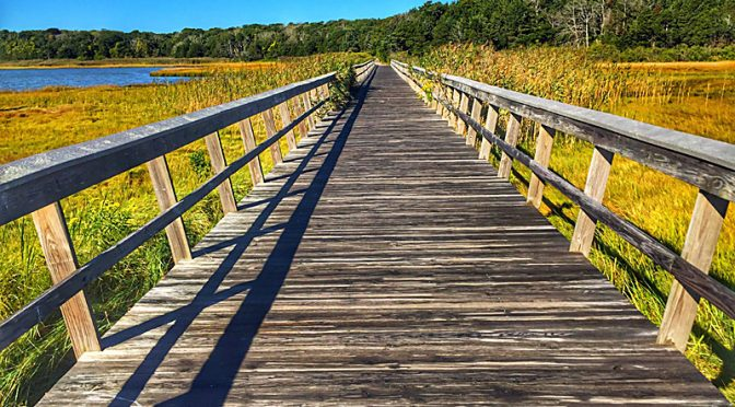 Love The Bridge Over Nauset Marsh On Cape Cod.