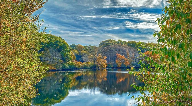 Beautiful Reflection On Great Pond In Eastham On Cape Cod In Horizontal or Vertical?