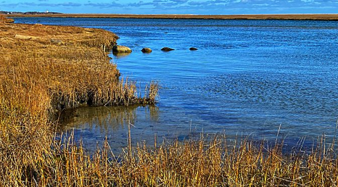 Beautiful View Of Nauset Marsh On Cape Cod.