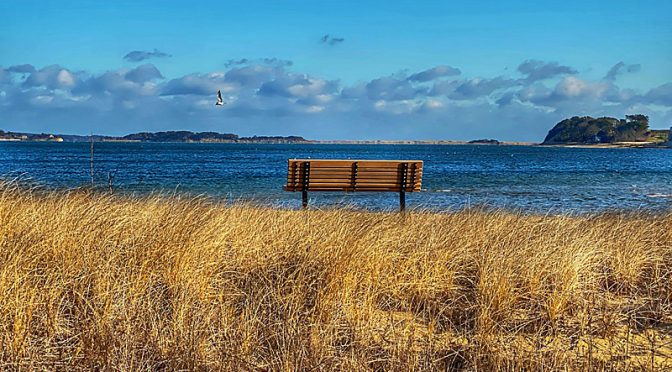 The Bench At Pleasant Bay In Chatham On Cape Cod.