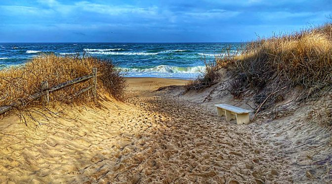 Coast Guard Beach Trail On Cape Cod.