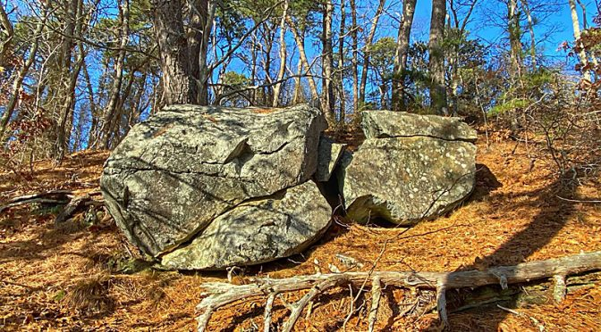 Another Cool Glacial Rock At Nickerson State Park On Cape Cod.
