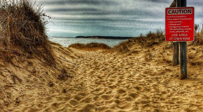 Trail To Wellfleet Harbor Beach On Cape Cod.