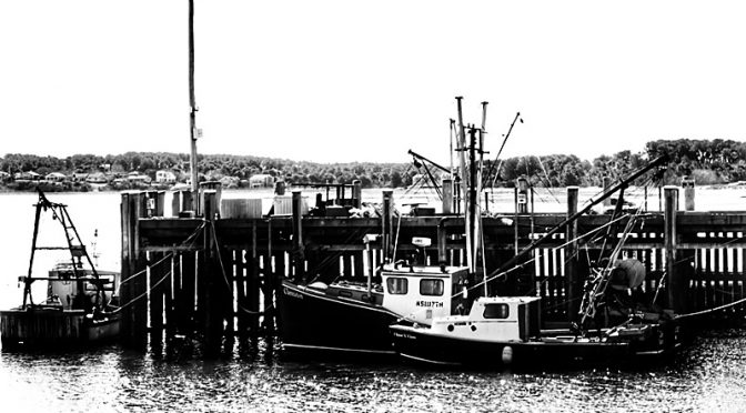Wellfleet Harbor On Cape Cod In Black And White Photography.
