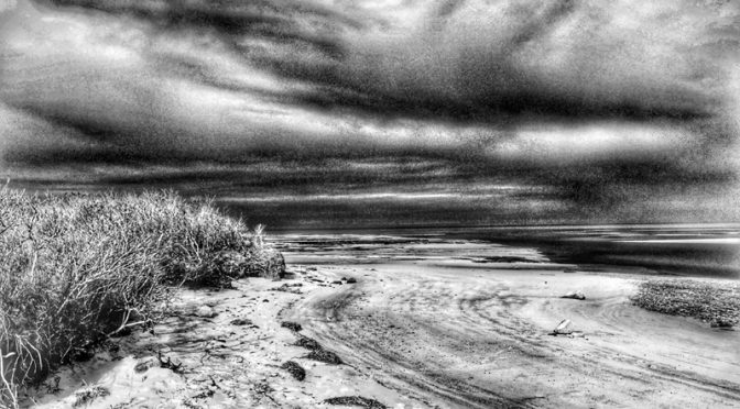 Boat Meadow Beach On Cape Cod In Black And White.