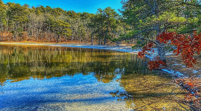 Reflections At Cliff Pond At Nickerson State Park On Cape Cod.
