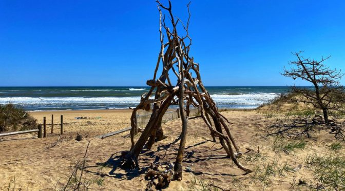 Interesting Free-Form Sculptures At Nauset Light Beach On Cape Cod.