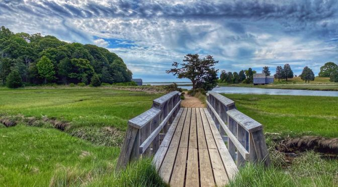 Love This Bridge On The Nauset Marsh Trail On Cape Cod.