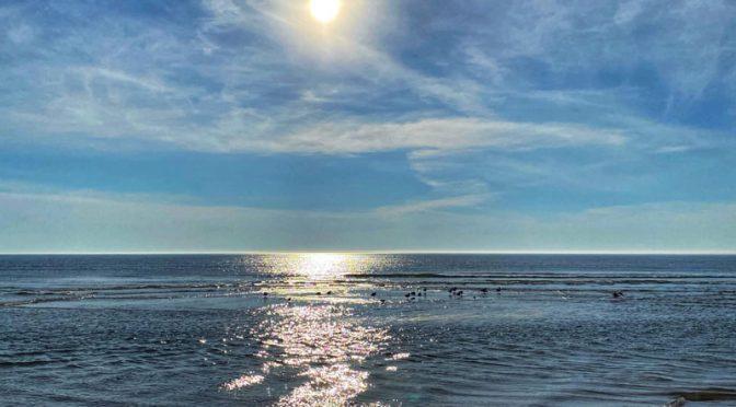 Good Morning,  Cape Cod!