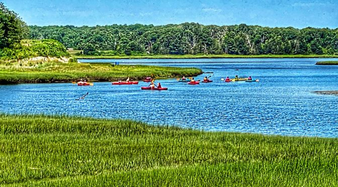 Lots Of Kayakers On Nauset Marsh On Cape Cod!