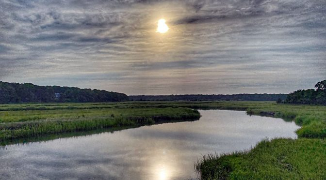 Beautiful Early Morning Reflection On The Salt Marsh On Cape Cod…. But Wait!