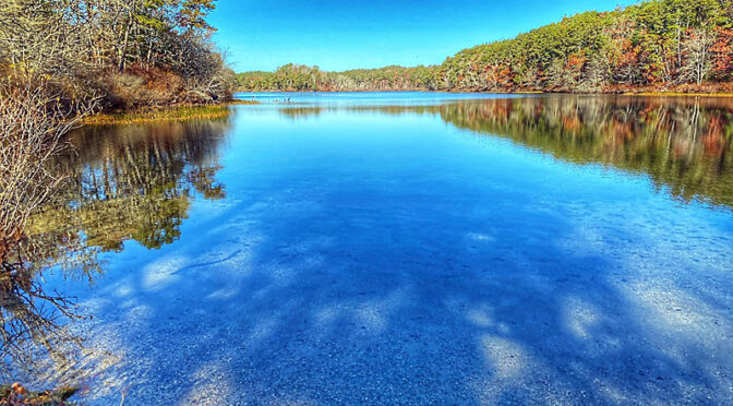 Pretty Reflection At Nickerson State Park On Cape Cod.