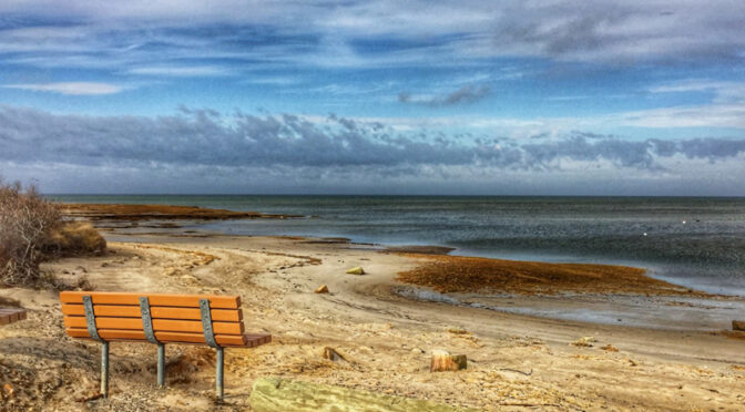 Love The Benches On The Cape Cod Beaches!