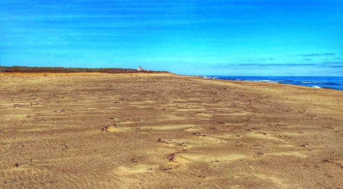 Coast Guard Beach On Cape Cod Is Huge After The Winter Storms.