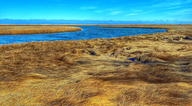 The Waters Of Nauset Marsh On Cape Cod.