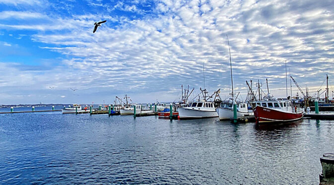 The Boats At Provincetown Harbor On Cape Cod.