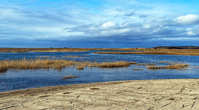 Two Images Of Boat Meadow Beach On Cape Cod.