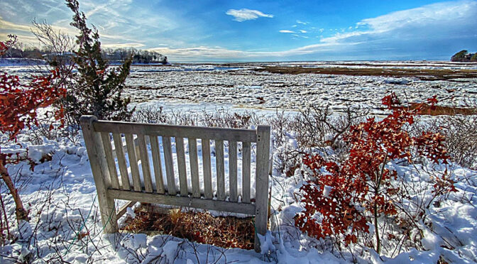Secret Bench On The Salt Marsh On Cape Cod.