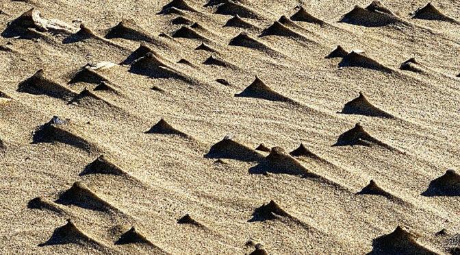 Sand Art On The Beach On Cape Cod.