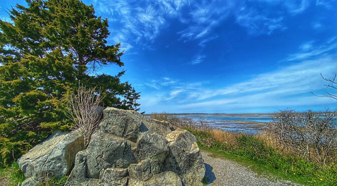 Love This Rock At Fort Hill On Cape Cod!