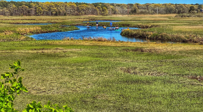 The Kayakers And SUPs Were Out Yesterday On The Salt Marsh On Cape Cod!