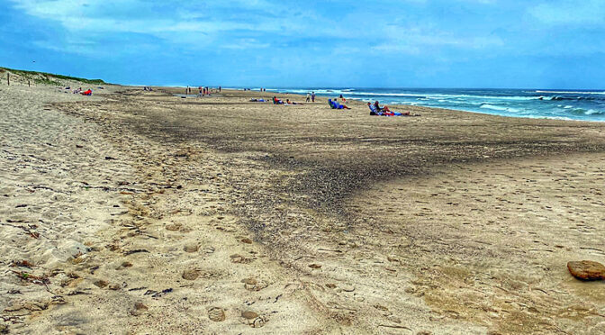 Nauset Beach In Orleans On Cape Cod Should Be Very Busy This Summer..