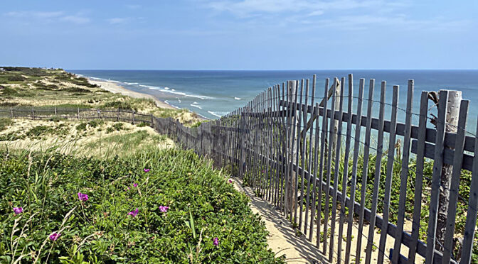 Marconi Beach In Wellfleet On Cape Cod.