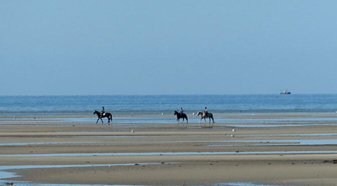 The Three Magi Out On The Flats On Cape Cod.